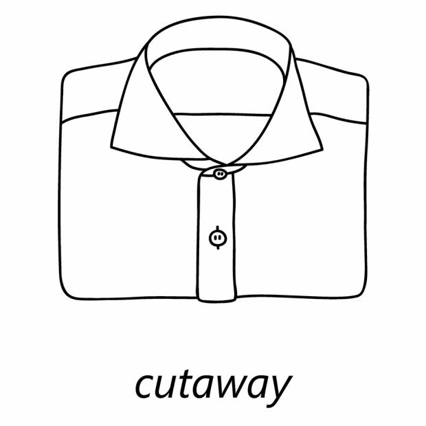 Kołnierzyk cutaway